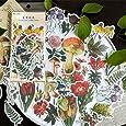 Laptop Stickers Scrapbook Stickers, Doraking DIY Decorative Fashion Plants Set Stickers for Laptop,Envelop,Scrapbook,Luggage, Water Bottle (Vintage Flowers, 60PCS/Pack)
