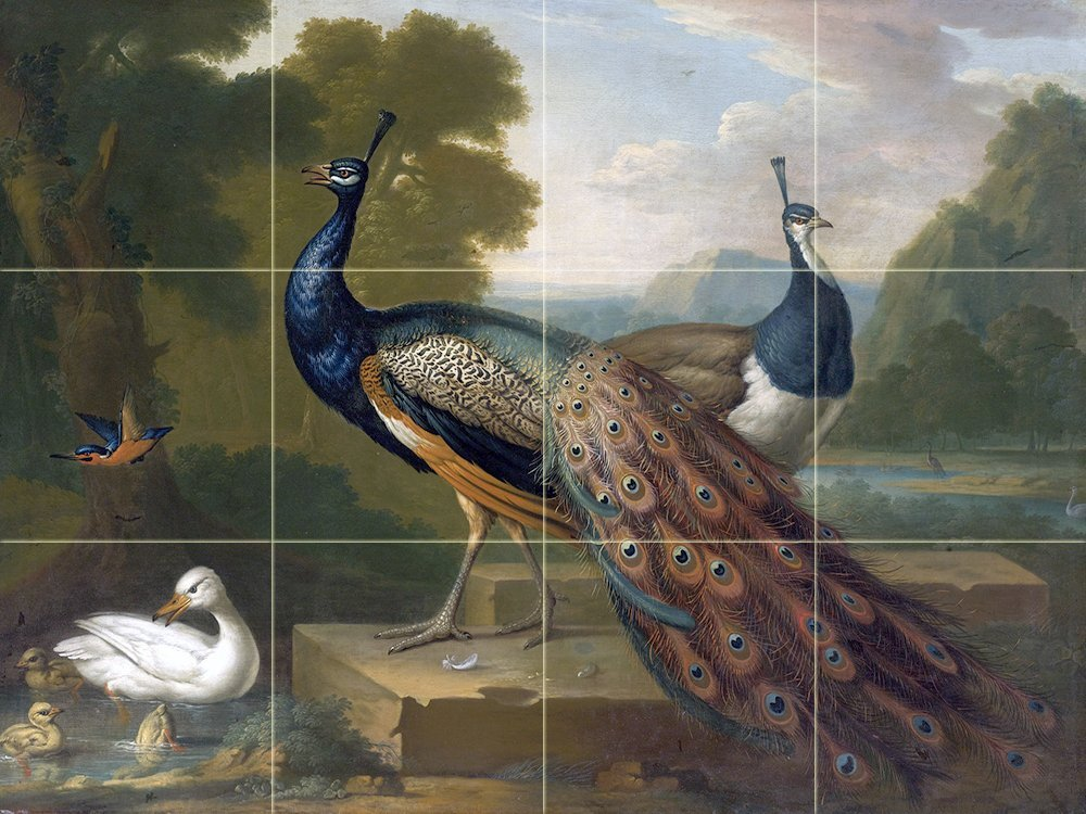 Peacocks bird duck accent tile mural kitchen bathroom for Duck pond mural