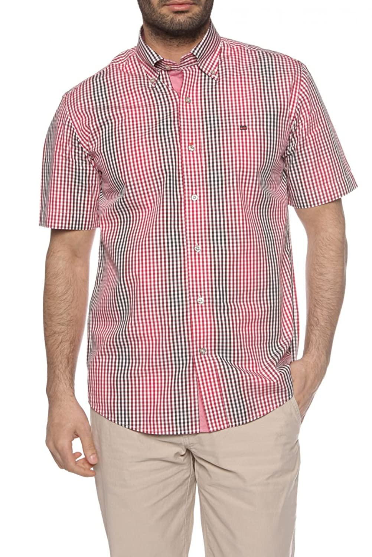 State of Art Short Sleeve Shirt REGULAR FIT, Color: Dark Red