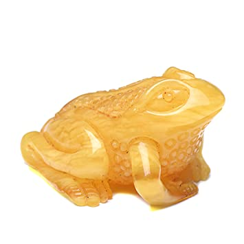 Amazon amber frog carved amber amber carvings carved
