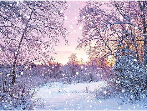 Snowing Landscape