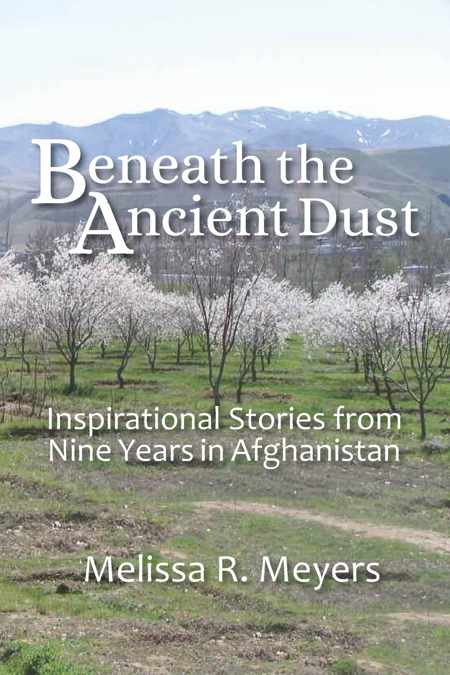 Image result for beneath the ancient dust melissa meyers