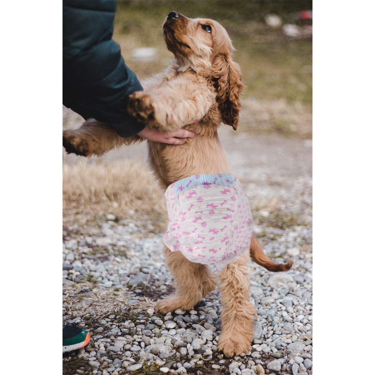 L:7-10KG 12Pack RCruning-EU Pa/ñales para Perro Pa/ñal Desechables para Mascotas