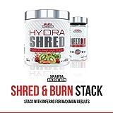 Sparta Nutrition Hydra Shred: Pre-Workout