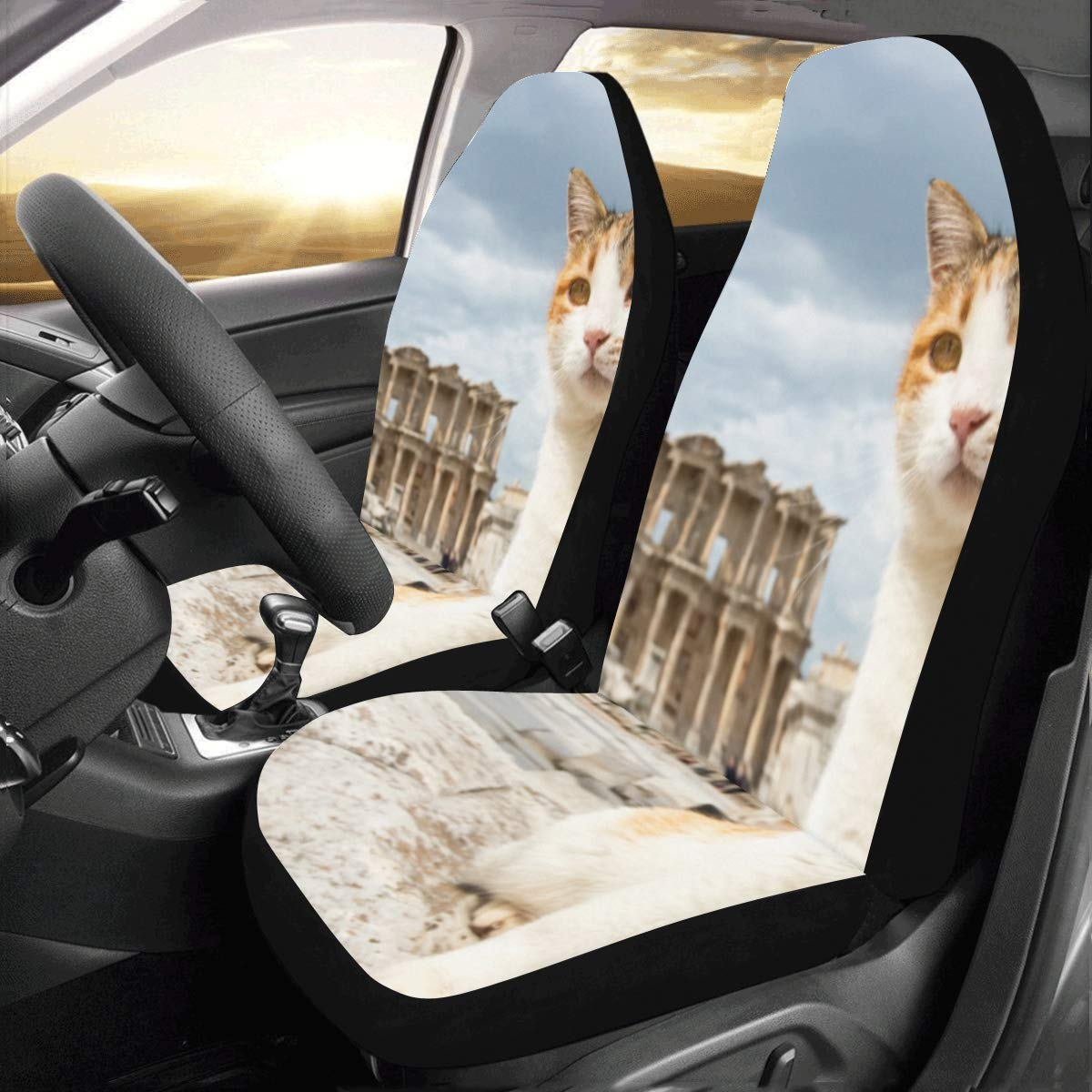 Terrific Amazon Com Car Seat Covers A Black And White Cat Lay By The Evergreenethics Interior Chair Design Evergreenethicsorg