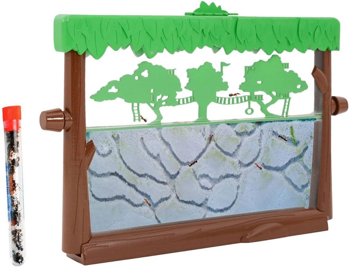 Live Ant Habitat - Tree House Theme