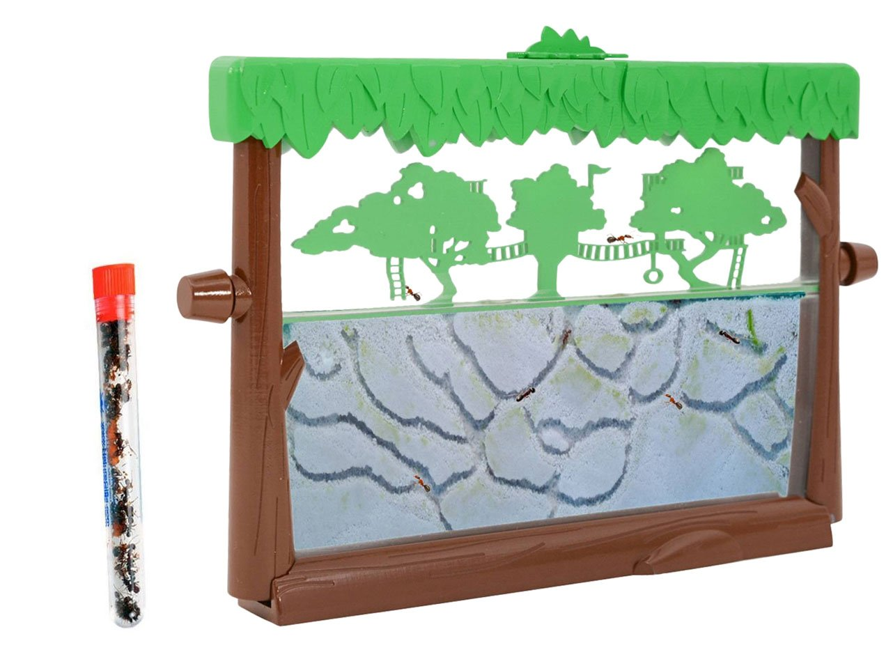 Live Ant Habitat Shipped with 25 Live Ants NOW (1 Tube of Ants) Tree House Theme