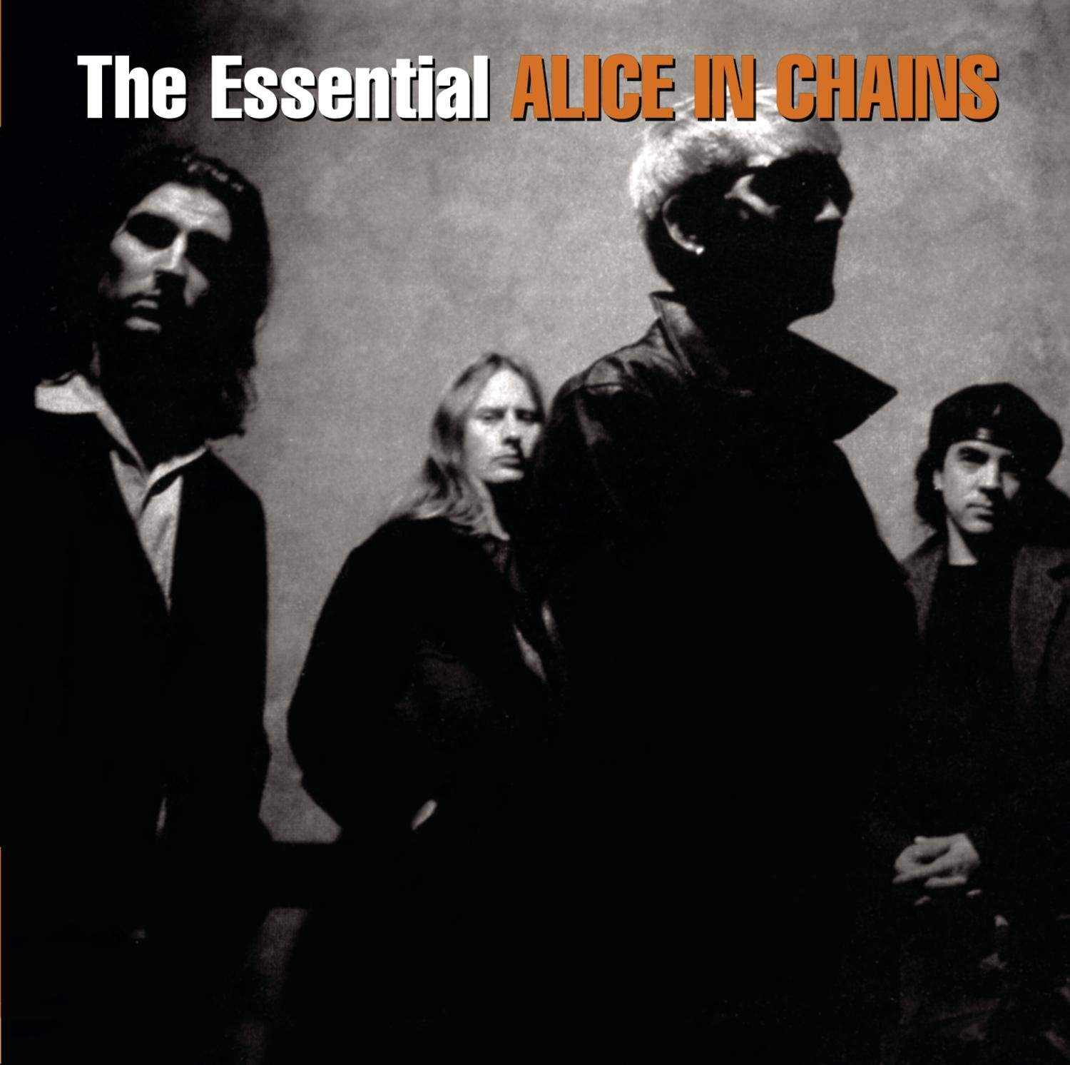 CD : Alice in Chains - Essential Alice in Chains (Remastered, 2 Disc)
