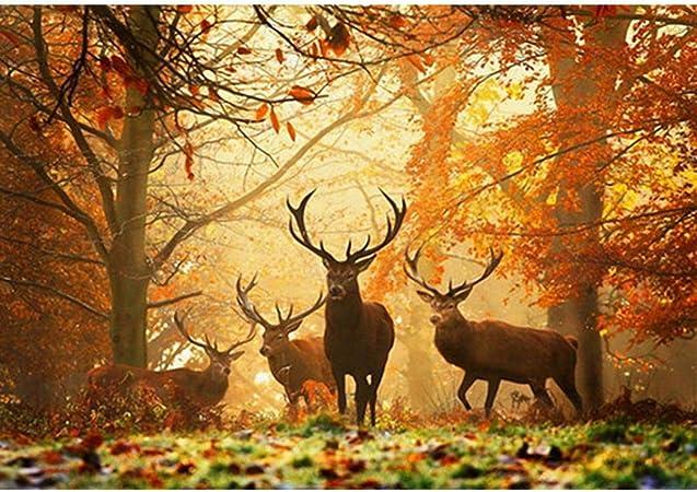 millenniums 5D Bricolage Diamant Peinture cerf en automne photo de la forêt  Paysage Broderie Diamant Peinture