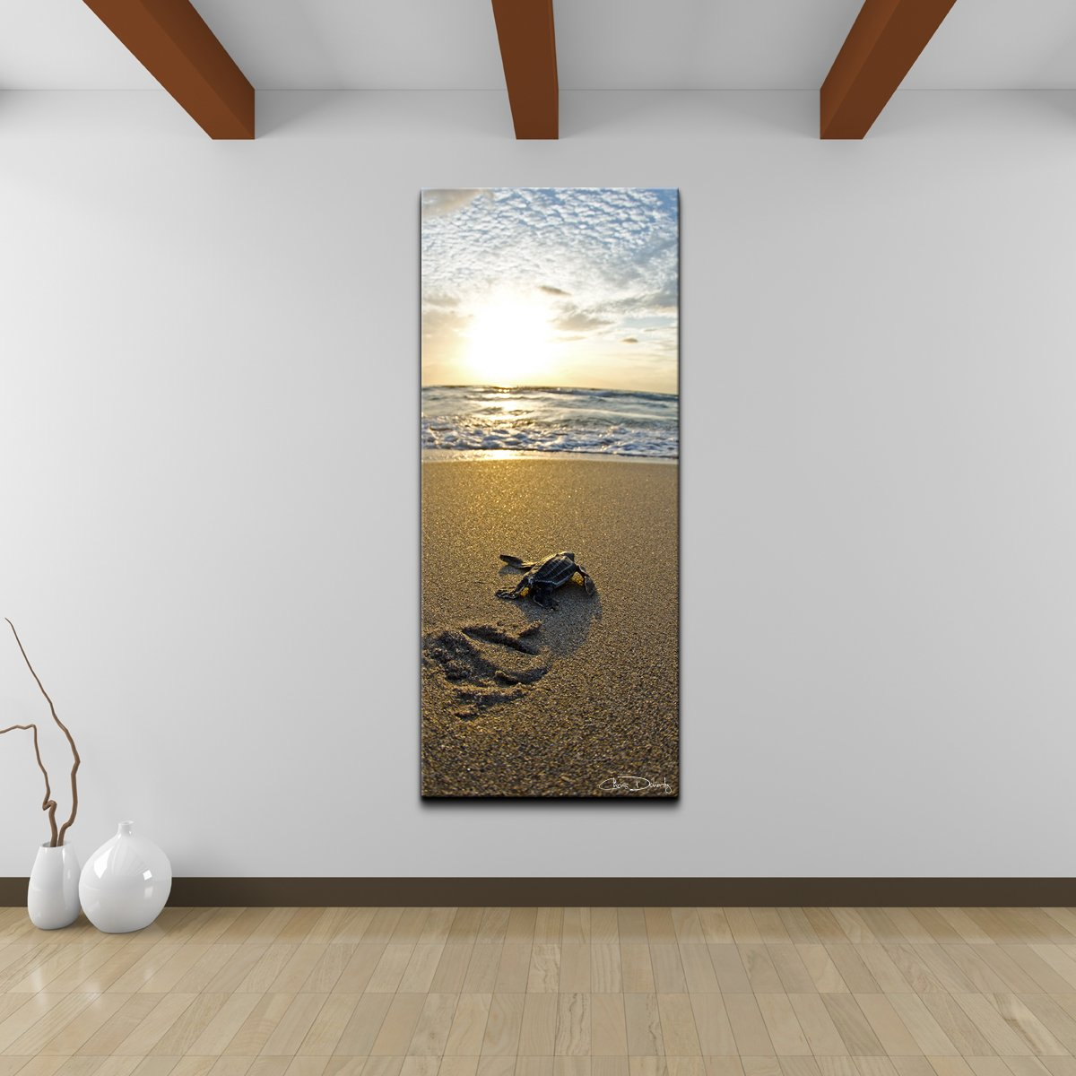 Ready2HangArt Christopher Doherty ''Baby Sea Turtle'' Canvas Wall Art