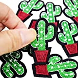 3 Pcs Cactus Shaped Embroidered Sew Iron On Applique Patch for DIY Crafts by Sdetter