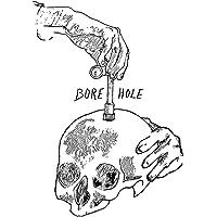 Bore Hole (Mit Press)