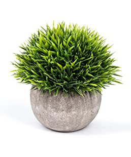 Vangold Lifelike Artificial Plants Plastic Grass Plants with Pots for Home/Office Decor (Green-1pcs)