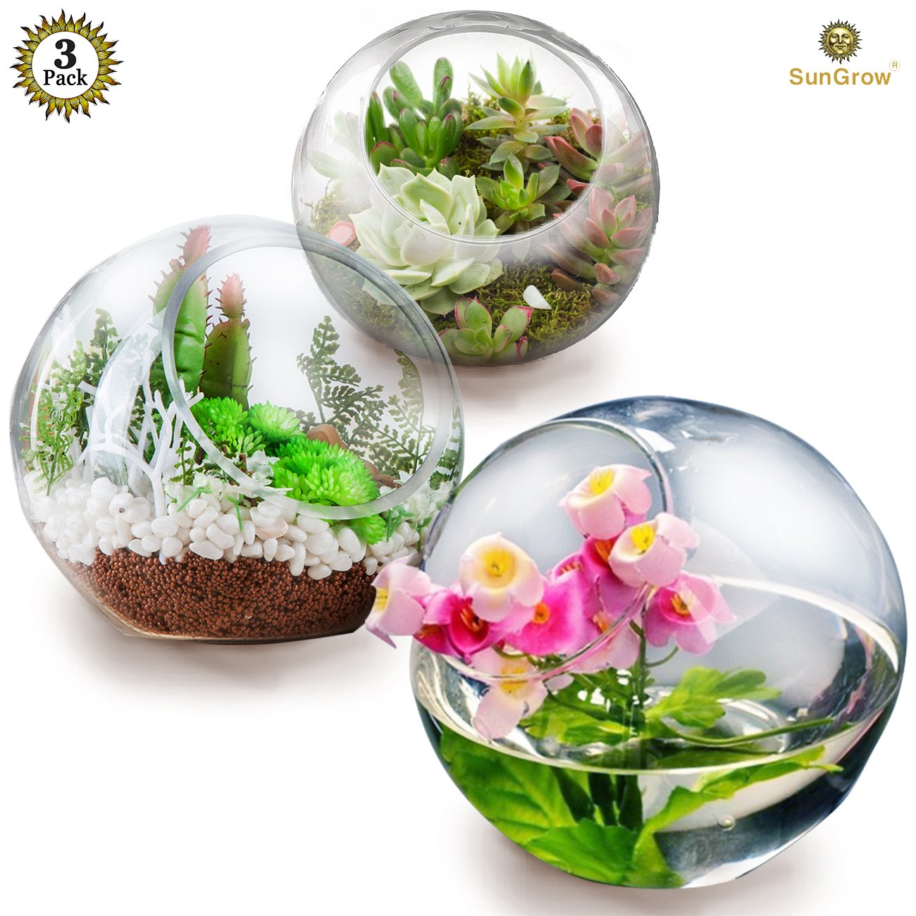 3 Tabletop Plant Containers - Creates Mini Glass Terrarium Garden - Ideal Spherical Vases for Ferns, Succulents, Air Plants, Cacti - Excellent Gift and DIY Projects - Can Withstand All Seasons by SunGrow