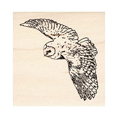 Flying Barn Owl Rubber Stamp: Arts, Crafts & Sewing