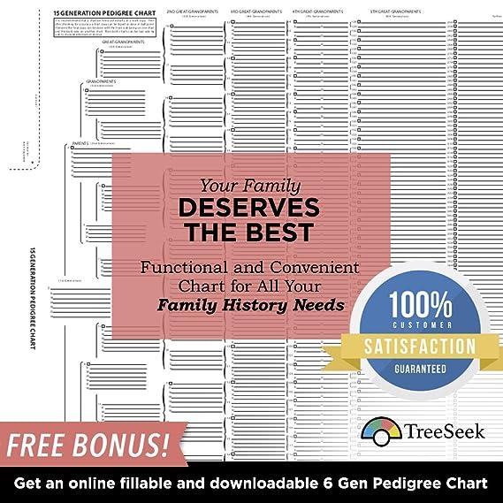 amazon com treeseek 15 generation pedigree chart blank genealogy