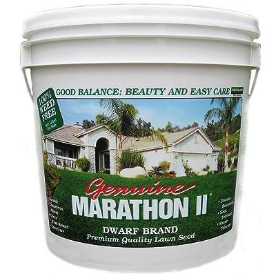 Southland Sod 4 Marathon II Grass Seed Mix, 5 Pounds : Grass Plants : Garden & Outdoor