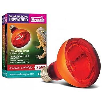 Arcadia Solar Basking Infrared Heat Lamp 100W: Arcadia: Amazon.co ...