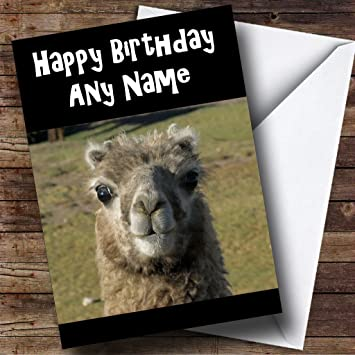 Llama Personalised Birthday Card Amazoncouk Office Products