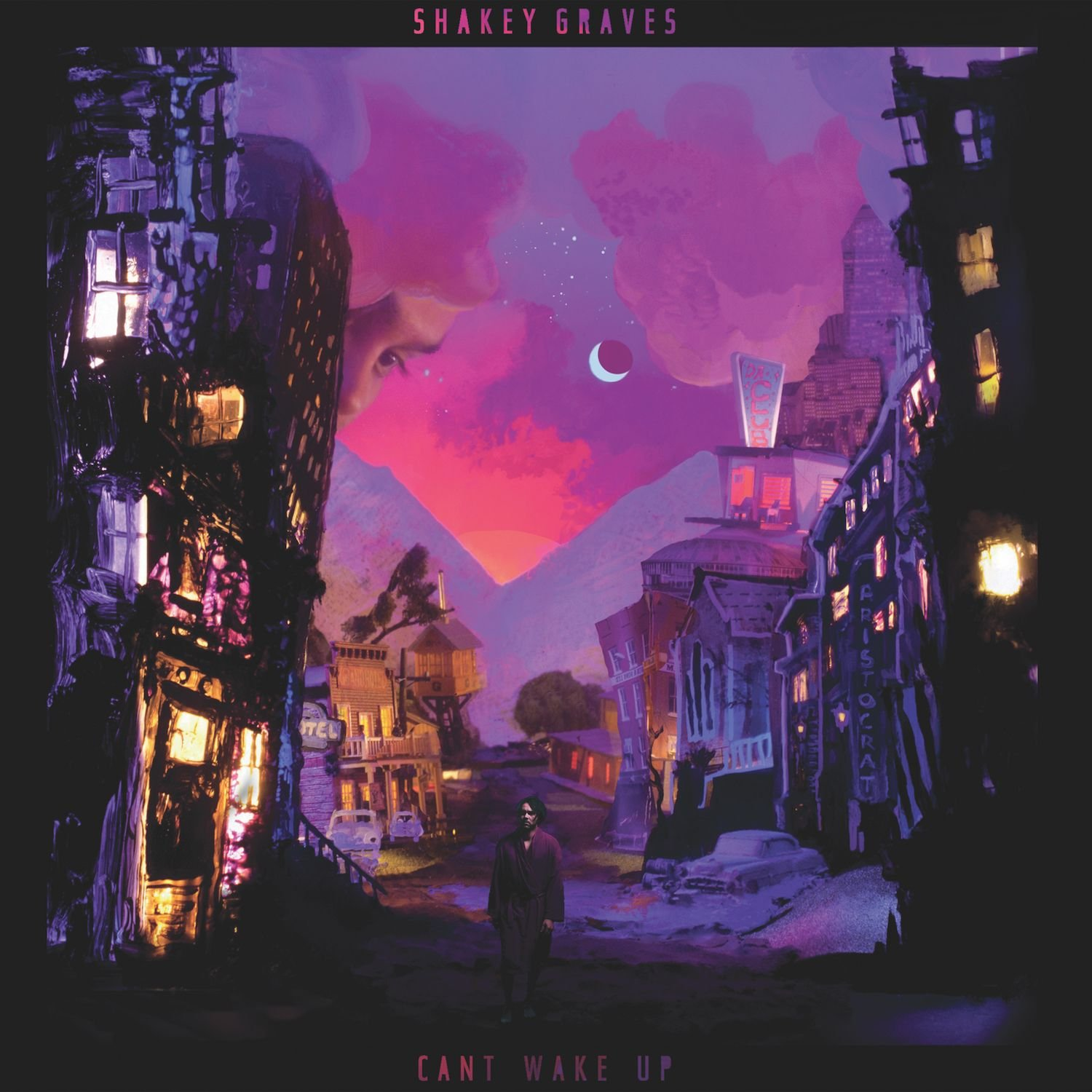 Cassette : Shakey Graves - Can't Wake Up (Cassette)