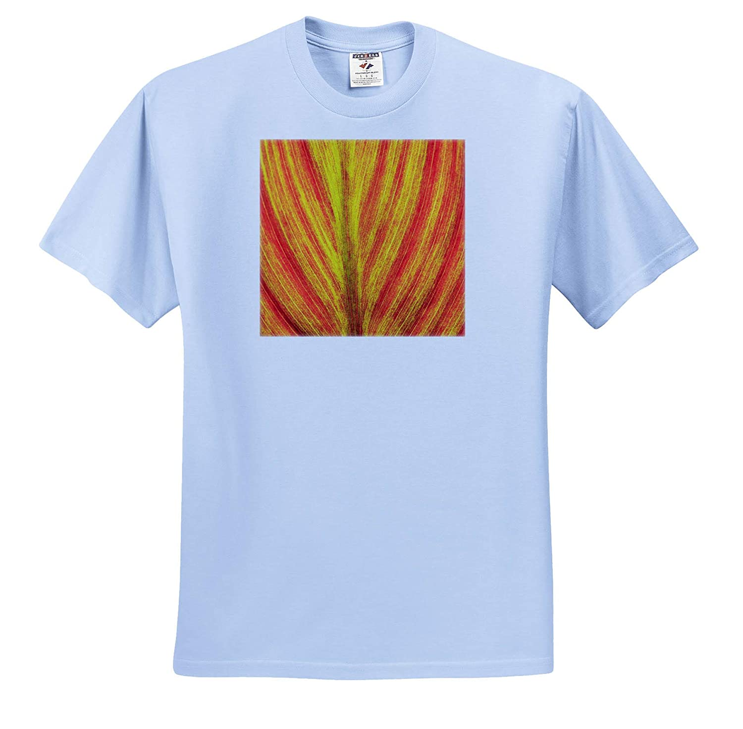 ts/_315196 - Adult T-Shirt XL Natural Patterns 3dRose Danita Delimont Close-up of an Orange and Yellow Tropical Leaf