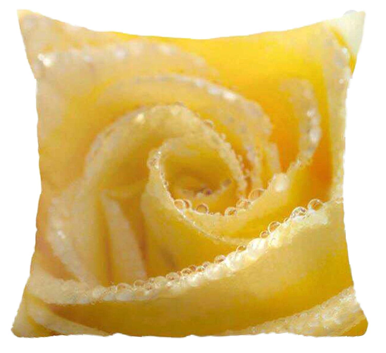 cushion mania Cojines de Exterior de Lona Impermeable ...