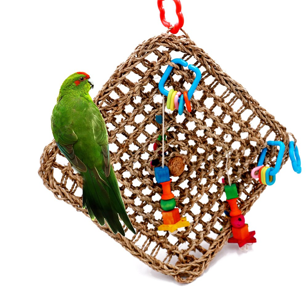 Borange Bird Foragaing Toys Parrot Seagrass Activity Wall Birds Toy for Birds Cockatiel African Grey Conure Cage Accessories 13inch