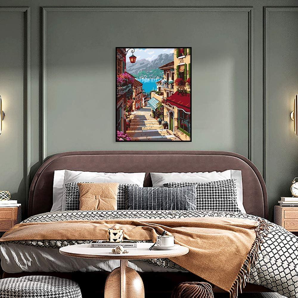 dibujo pinturas acr/ílicas lienzo con 3 pinceles de 16 x 20 pulgadas Tyrkuiy Kits de pintura para bricolaje por n/úmeros sin marco pintura al /óleo
