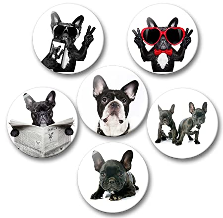Bulldog Francés retrato - Set de imanes para nevera{6} diámetro 5 ...