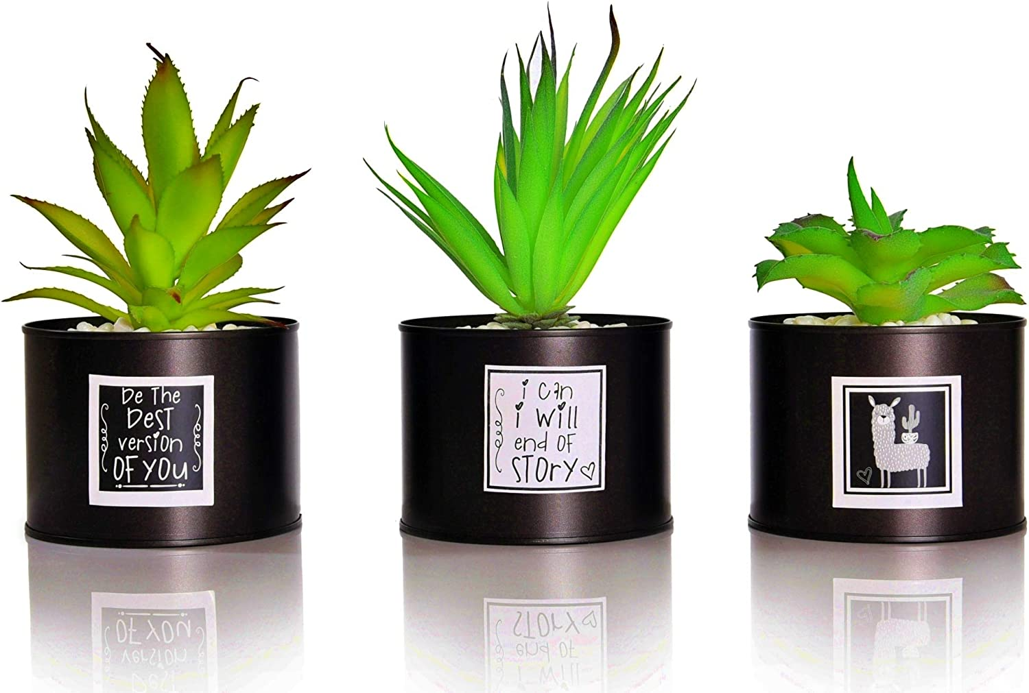 Amazon Com Be Sunny Office Decor For Women Desk Cactus Decorations Set Of 3 Fake Succulent In Black Luxury Pots Llama And Inspirational Signs Included Desk Decorations For Women