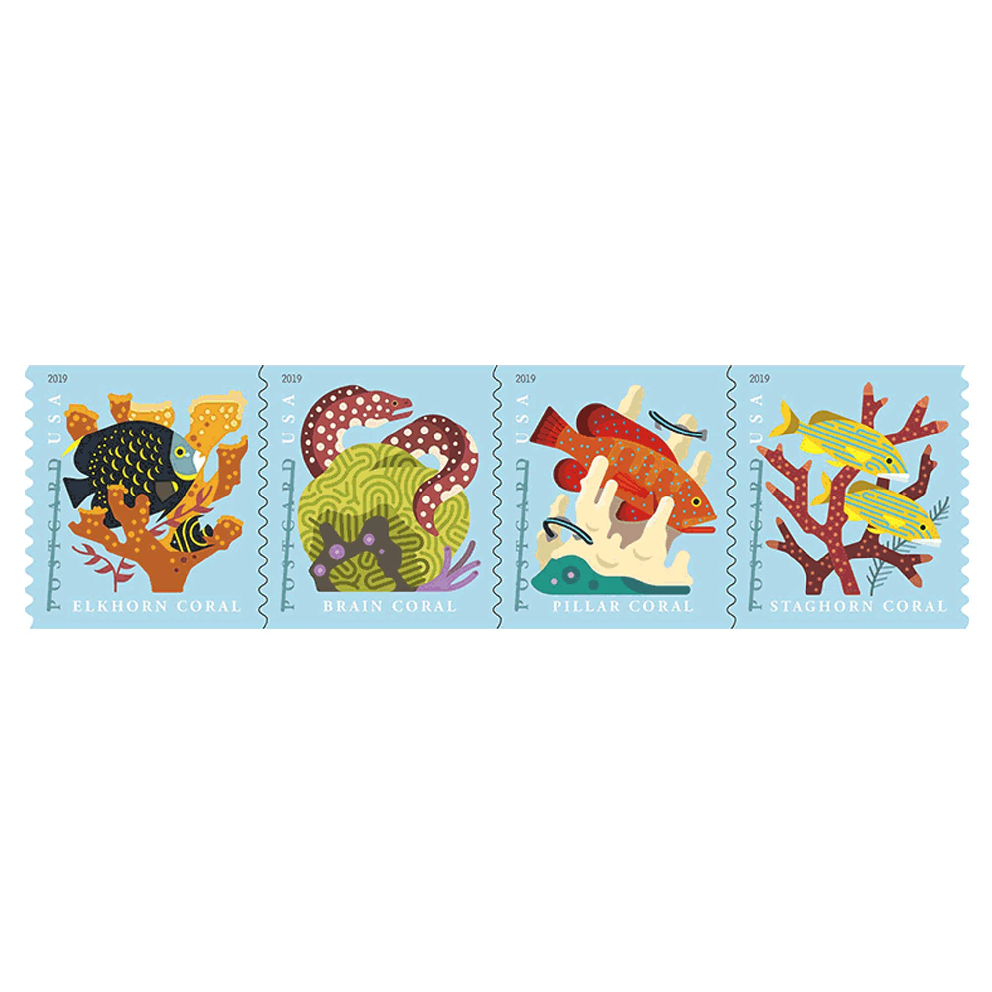 Coral Reefs Postcard Coil of 100 USPS First Class Forever Postcard Postage Stamps Sea (100 Stamps)