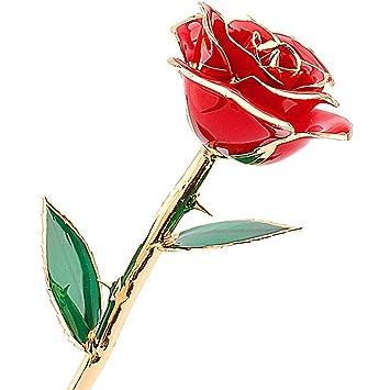 105b8e50991 zjchao Cadeau Femme - Rose éternelle - idée Cadeau Anniversaire (Rose)