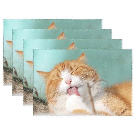 OREZI - Manteles individuales para gatos, diseño de animales ...