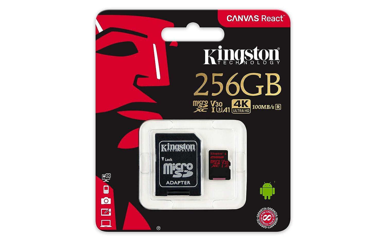 Kingston SDCR/256GB - Tarjeta de Memoria microSD, Color Negro