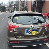 COGEEK Broken Glass 3D Sticker Car Window Ball Hits