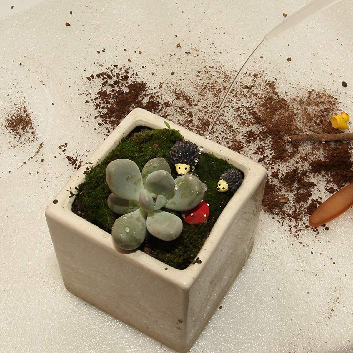 REFURBISHHOUSE Passez La Souris Sur LImage pour Zoomer Dans 7 Pcs Succulente Transplantation F/ée Miniature Jardin de Plantation Jardinage Outils de Main Ensemble