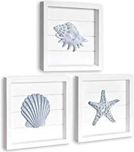 TideAndTales Beach Wall Decor with Blue Shells and Starfish, 3 White Wooden Frames with Pastel Seashells, Elegant Beach Decor for Bathroom or Coastal Bedroom, Ocean Inspired Beach Decorations for Home