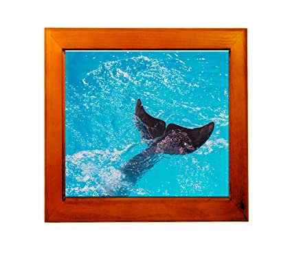 Amazon.com: Large Tail Fins Dolphin Diving In Sea Ceramic Tile in ...