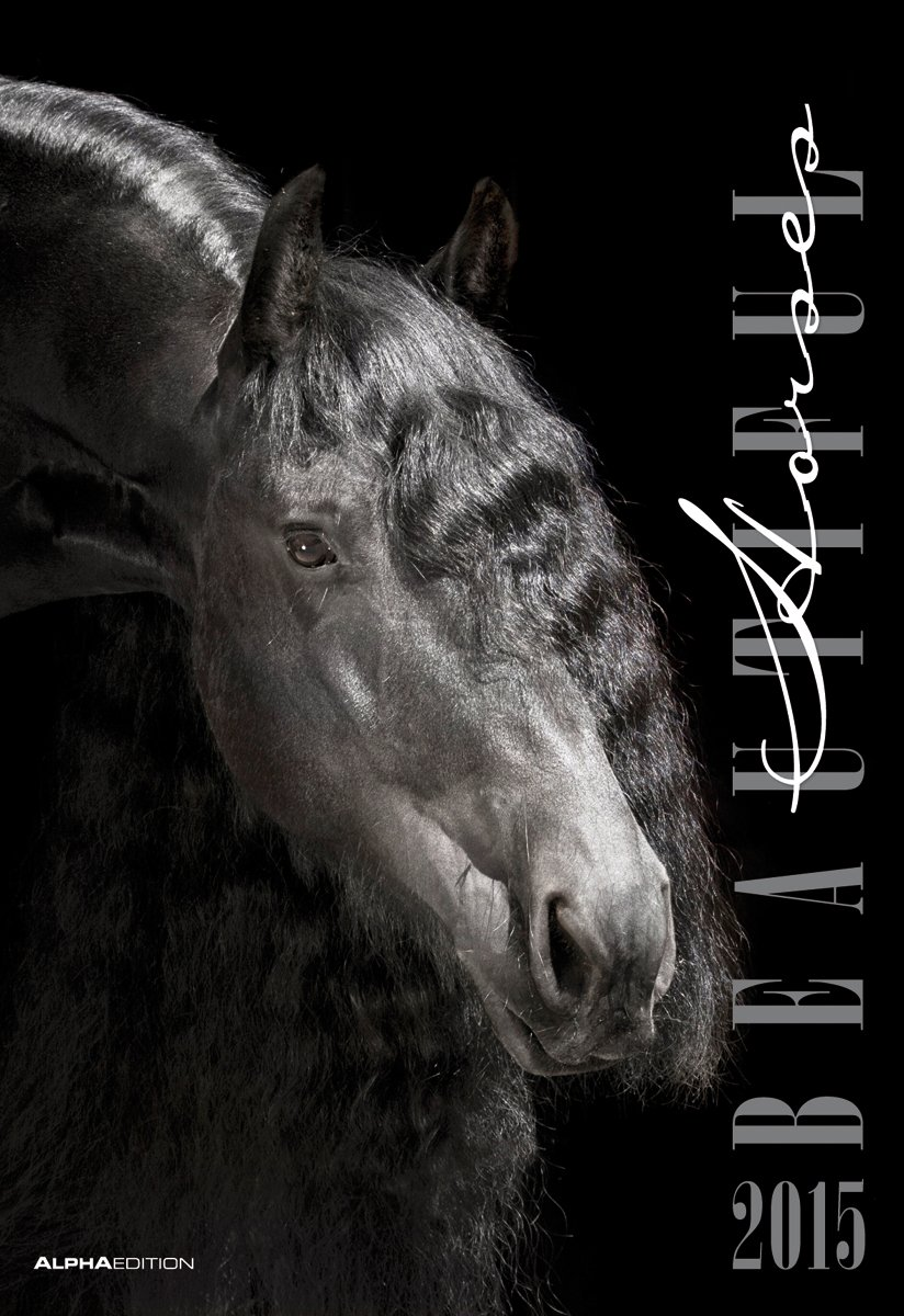 Beautiful Horses 2015 - Pferde - Bildkalender (34 x 50) - Tierkalender - by Nicole Hollenstein