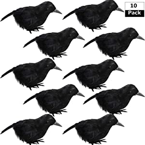 trounistro 10 Pieces Halloween Crows Realistic Feathered Crows Black Birds Ravens for Halloween Party Home Decoration
