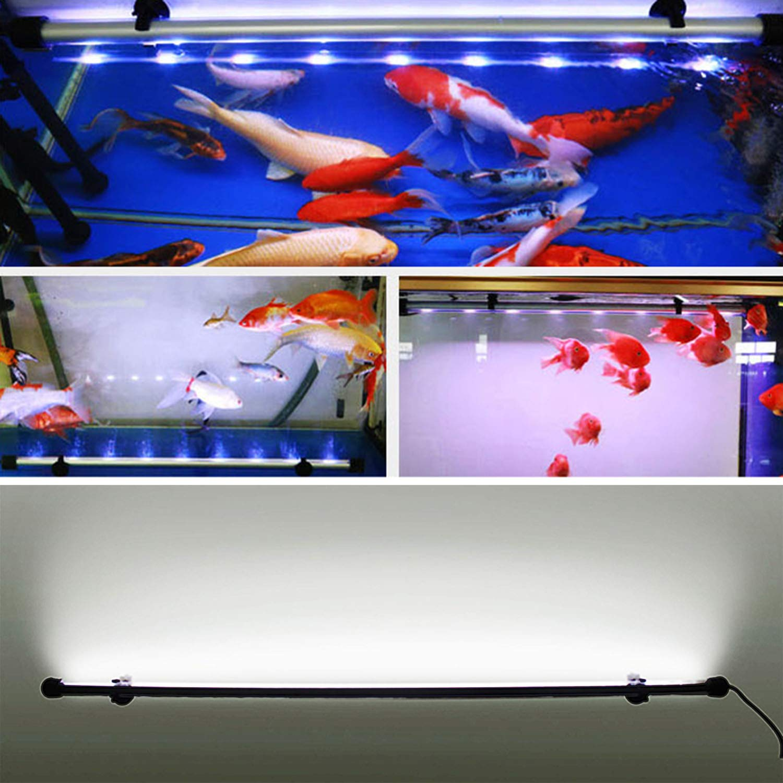 Acuario Iluminación LED Impermeable Acuario Iluminación Luz de día Simulador Azul y blanco (28/38/48/58/75 / 88CM): Amazon.es: Jardín