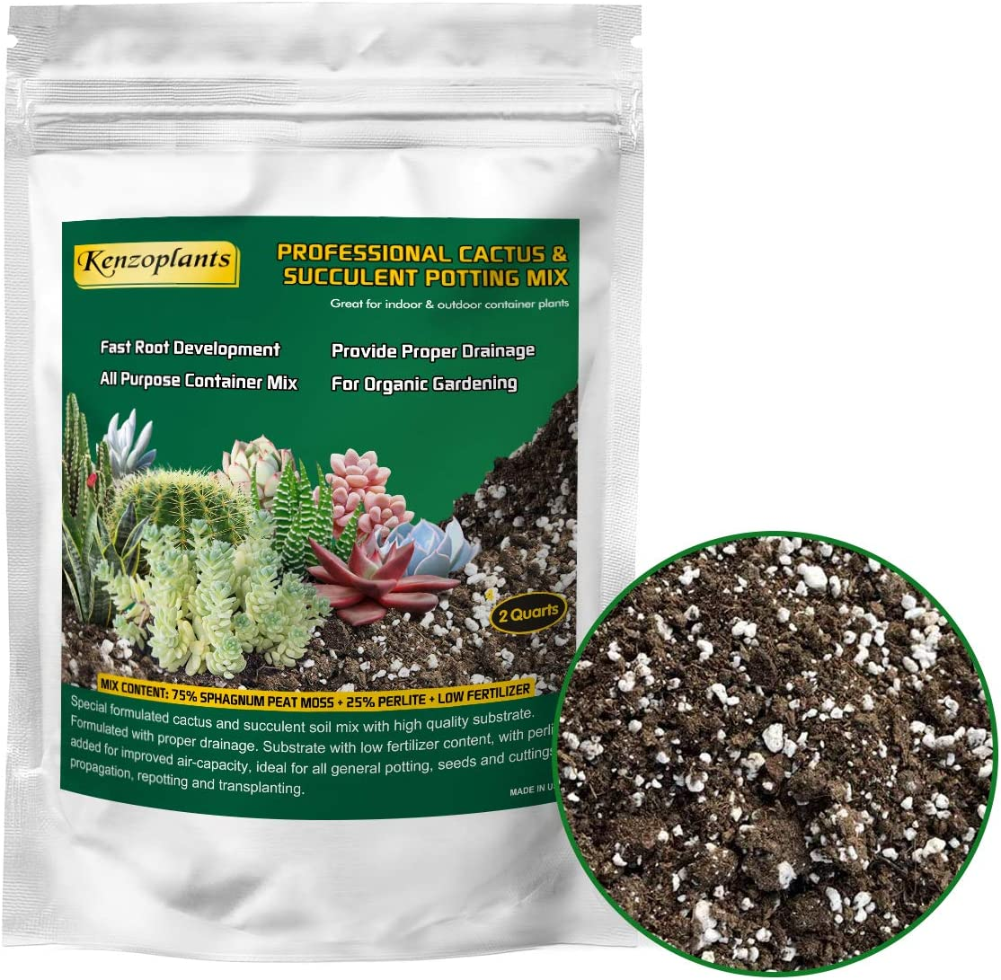 Organic Succulents & Cactus Soil Mix, Fast Draining Pre-Mixed Blend, Small Bag Potting Soil for Indoor Plants, 2 Quarts