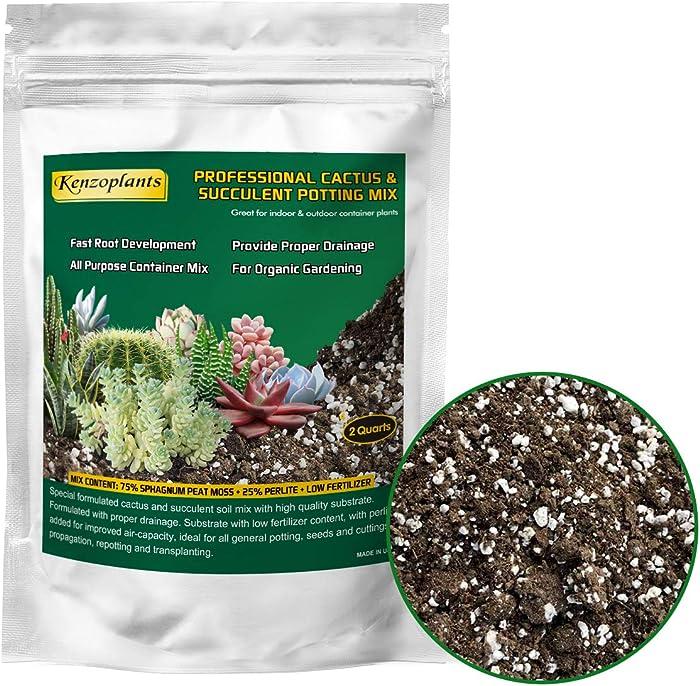 Top 10 Miracle Grow Succulent Plant Soil