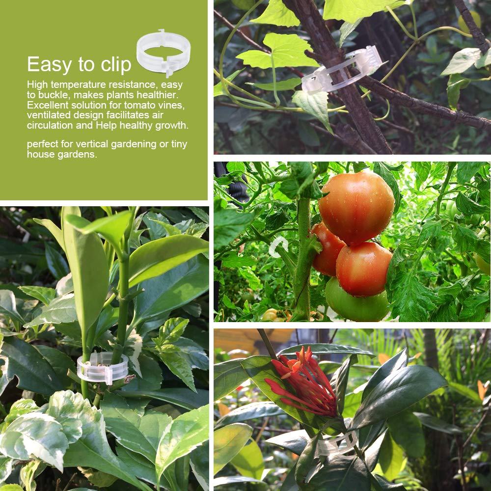 LEOBRO 150PCS Plant Support Garden Clips for Vine Vegetables,Tomato Trellis Clips,Makes Garden Vegetables to Grow Upright and Healthier,White