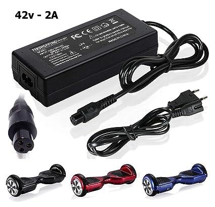 TEK® – Adaptateur dalimentation 42 V 2 A pour skateboard, hoverboard à deux roues, Smart Drifting – Chargeur universel pour trottinette électrique ...