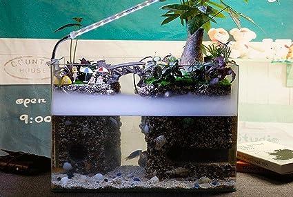 tanque de peces de acuario ecológico por lo que el vidrio templado, anti-niebla