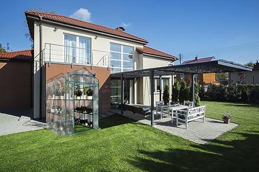 Planta grande caminar en invernadero con cubierta transparente – 12 estantes Stands 3 niveles estante – hierbas y flores jardín de casa verde: Amazon.es: Jardín