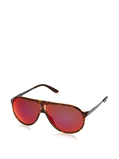 Carrera Gafas de Sol NEW CHAMPION/L (64 mm) Havana: Amazon ...