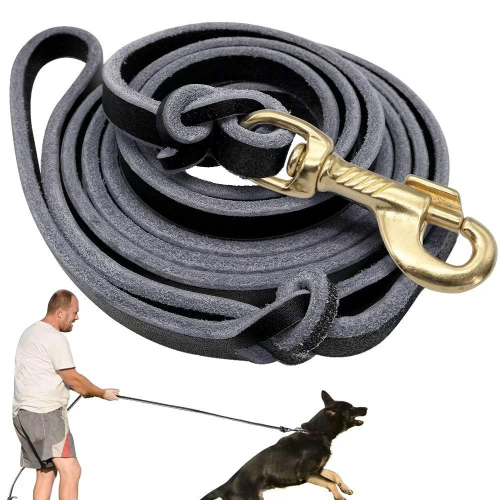 Black Didog Genuine Leather Dog Leashes, 8 Foot Professional Training Heavy Duty Dog Leashes, Fit Medium Large Dogs Walking Training Competition, Black