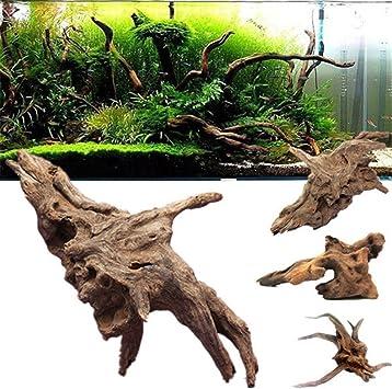 Lazzykit Aquarium Deko Naturlichen Stamm Wurzel Holz Fisch Tank Dekoration 10 35cm Zufallig Form Lazzykit Amazon De Haustier
